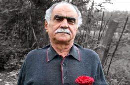 بیوگرافی فریدون پور رضا